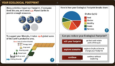 Eco-Footprint