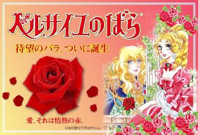 variedad de rosa llamada rosa de versalles