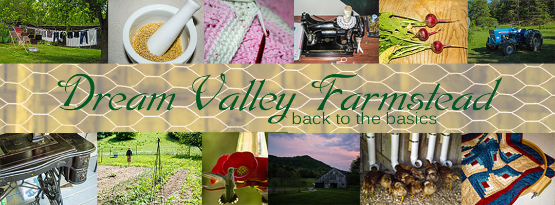 Dream Valley Farmstead