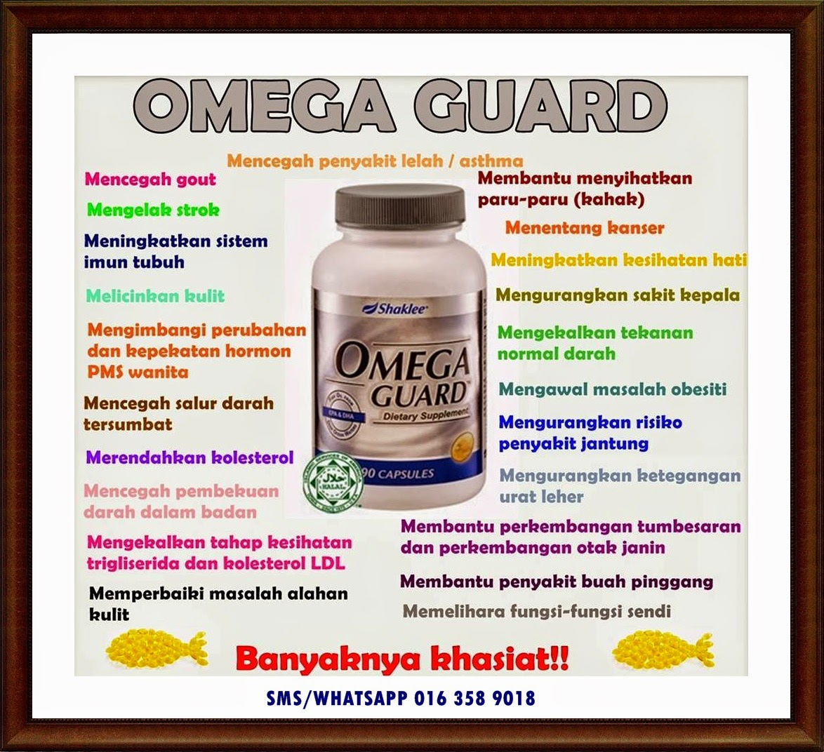 manfaat omega