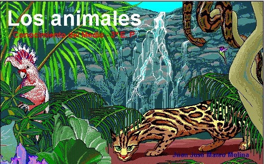 http://clic.xtec.cat/db/act_es.jsp?id=1054