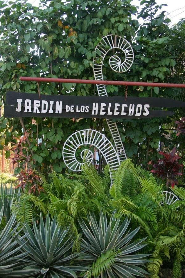 El jard n de los helechos en santiago de cuba guia de - Los jardines de lola ...