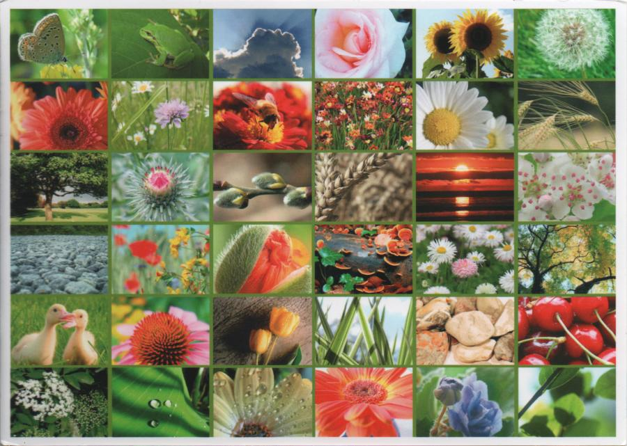 multiview postcard of twenty different spring and summer views