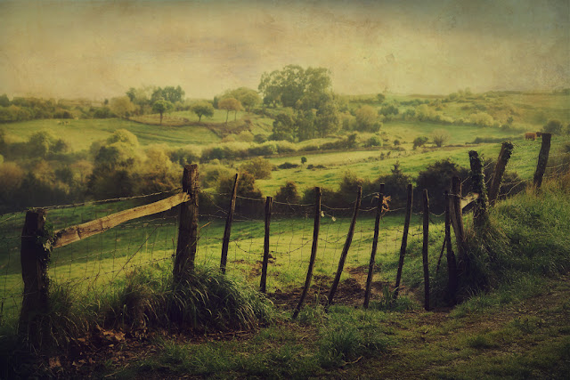 landscape art photo contemporary art pictorialism