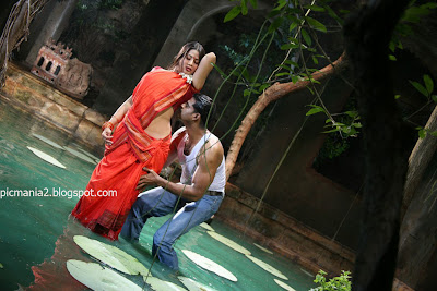 south indian hot and sexy telugu actress sangeetha wet saree navel cleavage romancing hot image gallery