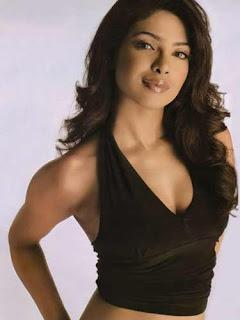 Priyanka Chopra New Photoshoot 2013