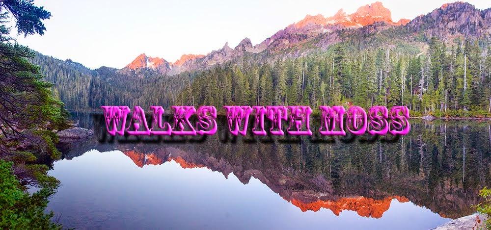 Walks with Moss