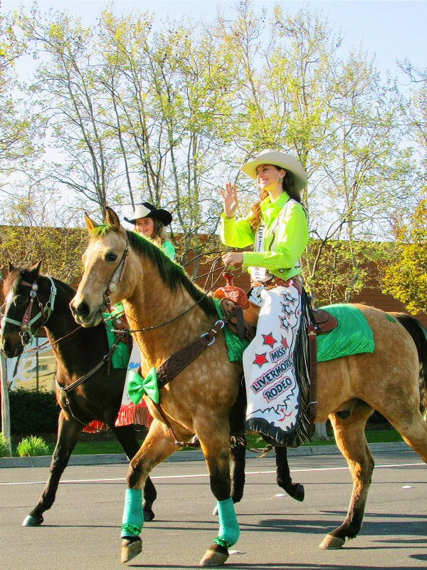 Dublin St Patrick's Day Parade 2014 // Miss Livermore Rodeo & Horse
