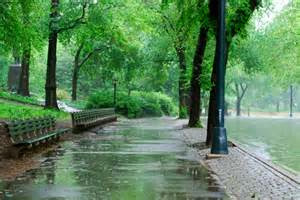 RAINFALL:   THE PARK