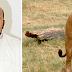 """قبيلة تشترط على داعية سعودي """" قتل أسد """" مهراً للزواج"""