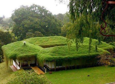 المنزل الأخضر