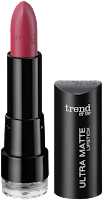 Preview: Die neue dm-Marke trend IT UP - Ultra Matte Lipstick 070 - www.annitschkasblog.de