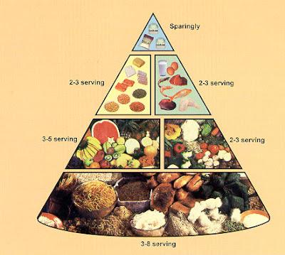 Pengertian Nutrisi : Macam Jenis Dan Contohnya