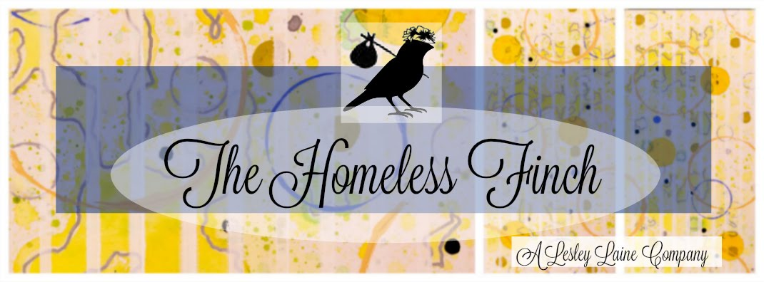 The Homeless Finch