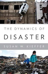 ==>My book:The Dynamics of Disaster <==