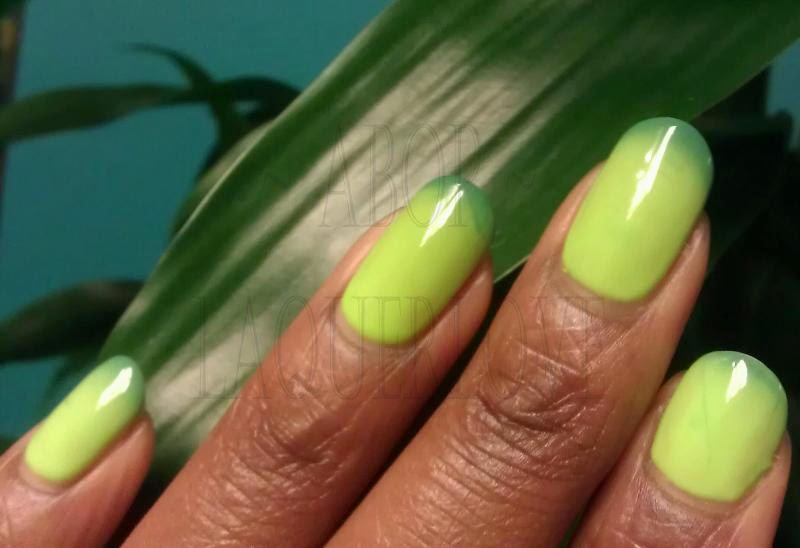 ANOTHER Bottle of Polish?!: Le Chat Mood color changing gel ...
