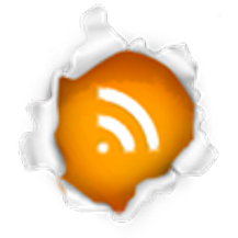 Nossos RSS FEED