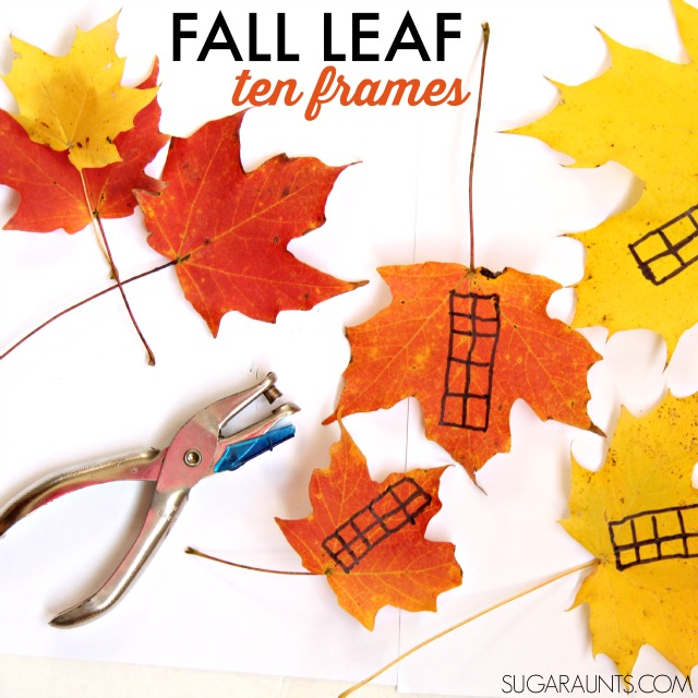 Use those gorgeous fall leaves in a math ten frame activity (with Kindergarten through second graders!) and work on fine motor strengthening and proprioception to the hands, too.  Such a great sensory input activity that is a workout and a fun warm up to handwriting tasks.