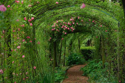 love  place delightful garden