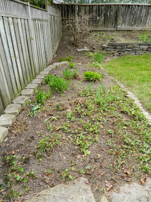 Spring garden cleanup Graydon after by Paul Jung Gardening Services Toronto