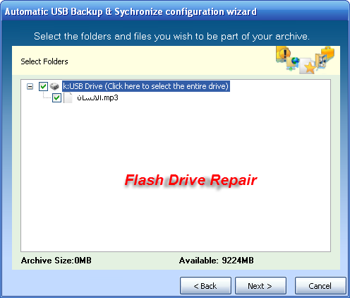 How to backup/sync files to a USB drive automatically when plugged in