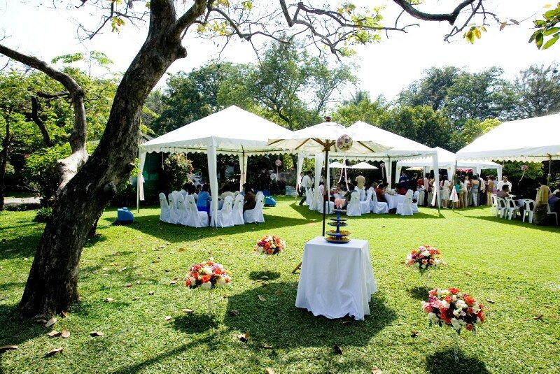 Backyard Tent Wedding Reception Ideas :  offer you 12 elaborate wedding PowerPoint templates for free download