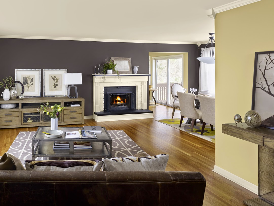 Cozy Living Room Colors Amusing Of Living Room with Accent Wall Paint Colors Photo