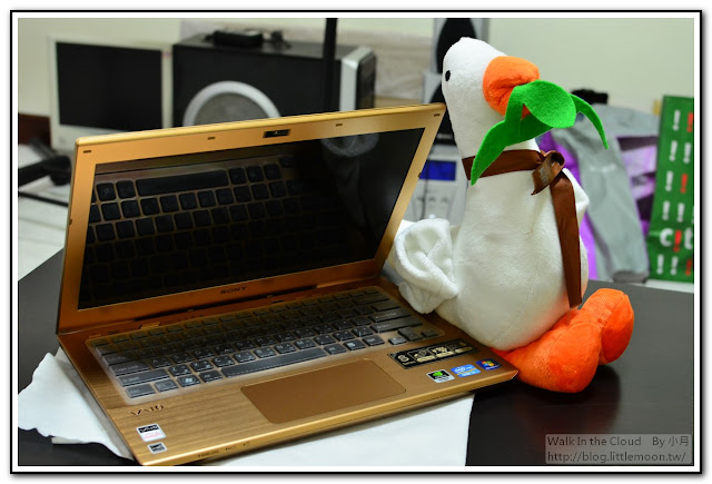 肥鵝與S13A