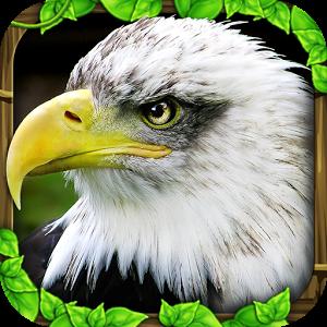 Download Eagle Simulator v1.0 Full Game Apk