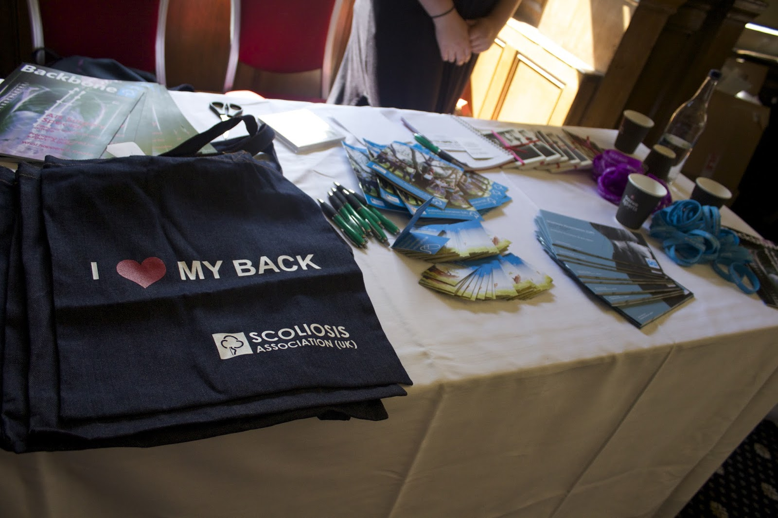 Scoliosis Association at the Big Blogger Conference London