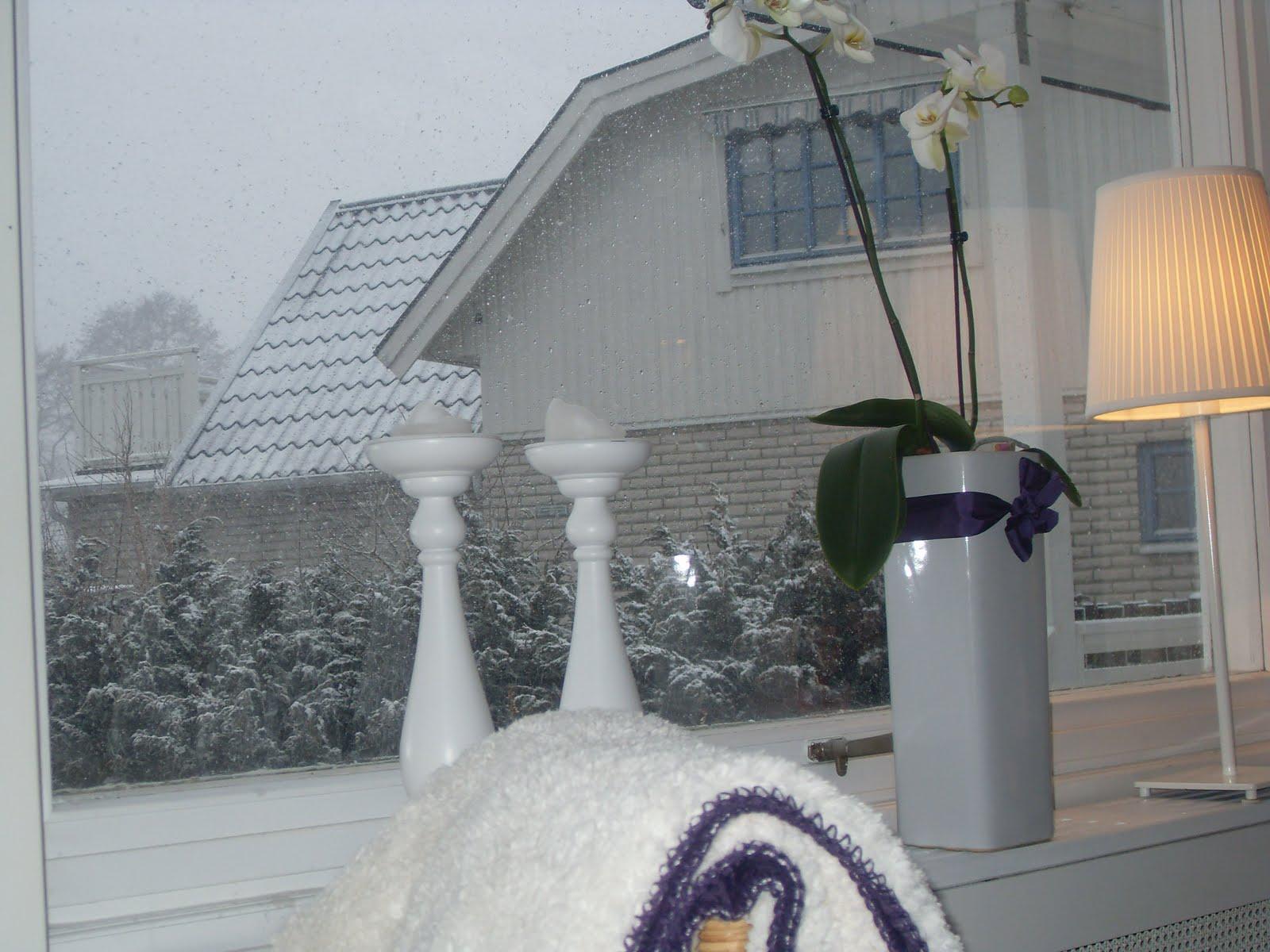 Renovering och inredning av ett vitt hus vid havet: februari 2011