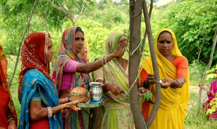 This Indian Village Plants 111 Trees Every Time a Girl Is Born - As a female child is born, the village gathers to plant 111 trees..