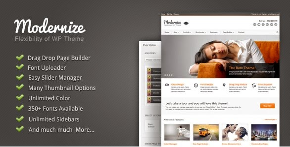 Modernize-Flexibility WordPress Theme