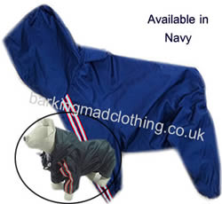 Dog Trouser Suit