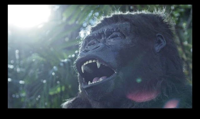 There's even a gorilla involved in the music video