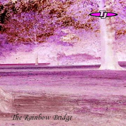 TJ - The Rainbow Bridge (2012)