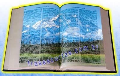 Frases e Versículos da Biblia