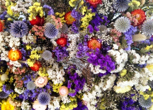 Dried flowers available at The Perth Farmers Market