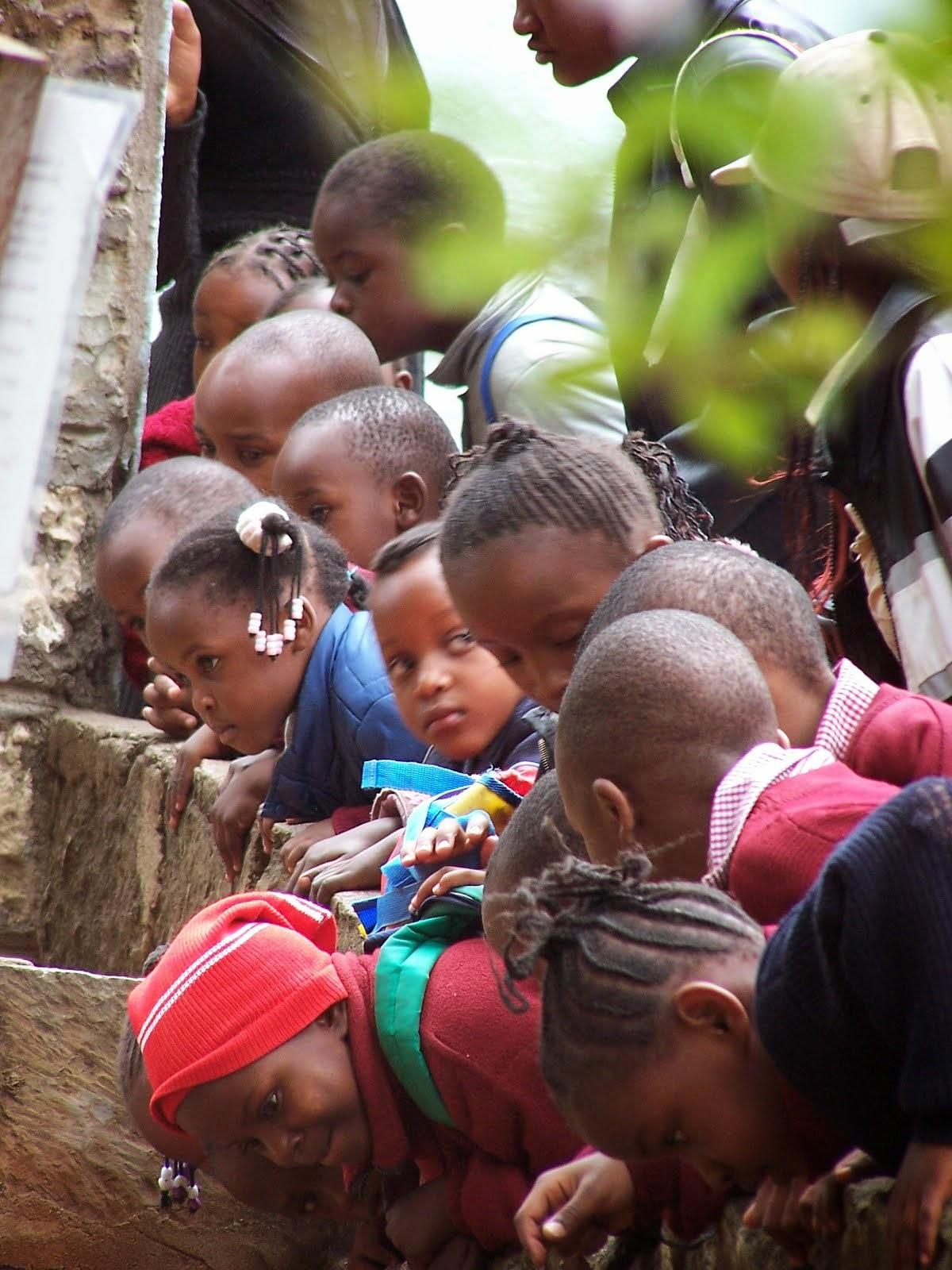 at snake park - kenya