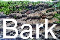 http://kolonihavelivet.blogspot.dk/2015/11/bark.html