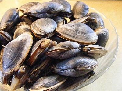 The Food Guru: Steamers: Health Under The Waves!