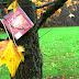 Bookcrossing : Πού πάνε τα βιβλία όταν φεύγουν από εμάς ;