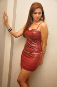 Actress Rishika Sizzling Photo shoot Gallery-thumbnail-7