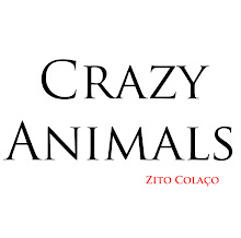 Crazy Animals