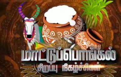Vijay Tv  Pongal Special Programe Shows – 14,15,16th January 2014 | Promo