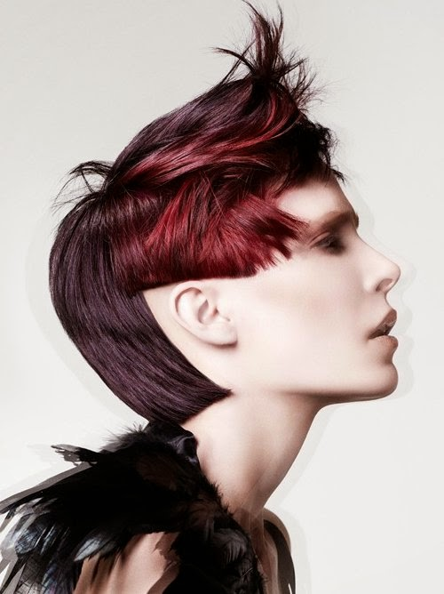 Picture of Punky Hairstyles Step by Step Instructions 2014