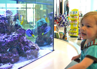 Sierra checking out the fish tank at Children's Museum of Richmond