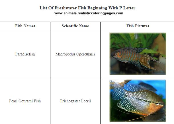 Freshwater Fish Names Starting With P | Animals Name A To Z