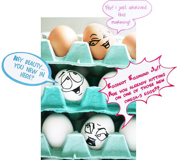 creative art egg photography
