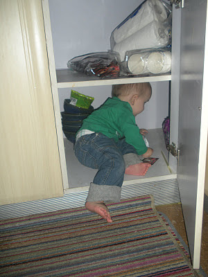 boy going to Narnia